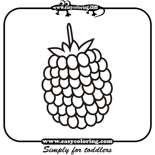 Raspberry  Simple fruits  Easy coloring pages for toddlers